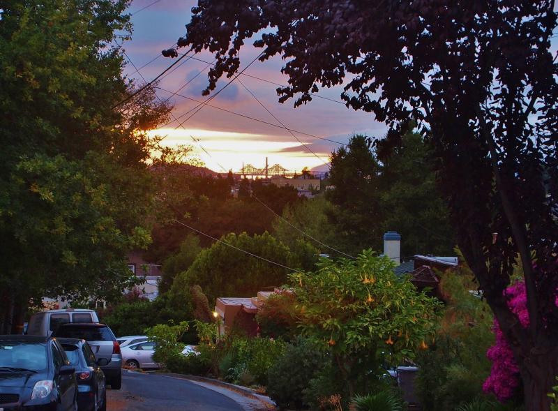 Treelined Neighborhood above Lake Merritt - Image 1 - Oakland - rentals