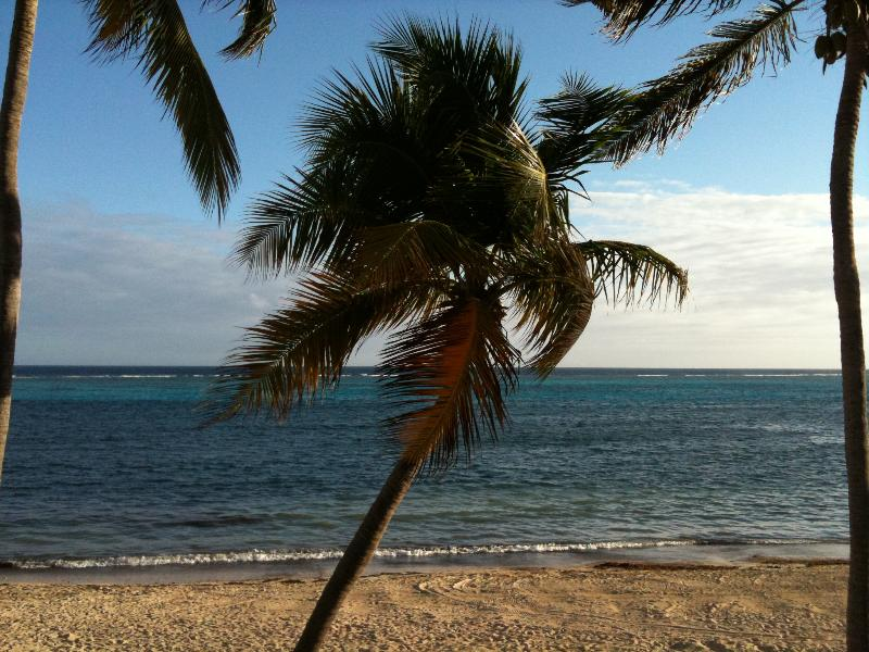 our patio view - Sugar Beach.That Says It All.. (NO PASSPORT REQ'D) - Christiansted - rentals