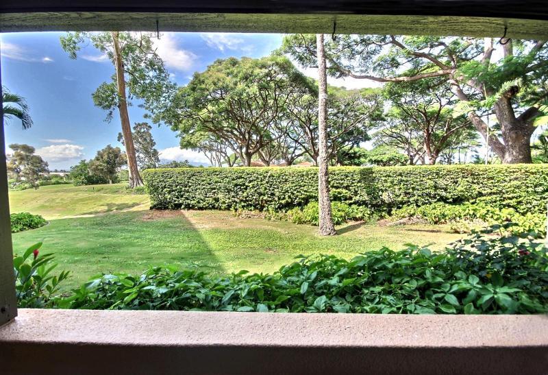 Beautiful well manicured garden view off the lanai.  - Kaanapali Royal #KRO-Q102 Kaanapali, Maui, Hawaii - Kaanapali - rentals