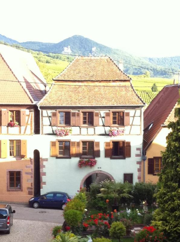 Le Prévot**** bathed in light in the heart of the village - Wineroad Hunawihr : Le Prévot**** - Luxury for 2-4 - Hunawihr - rentals