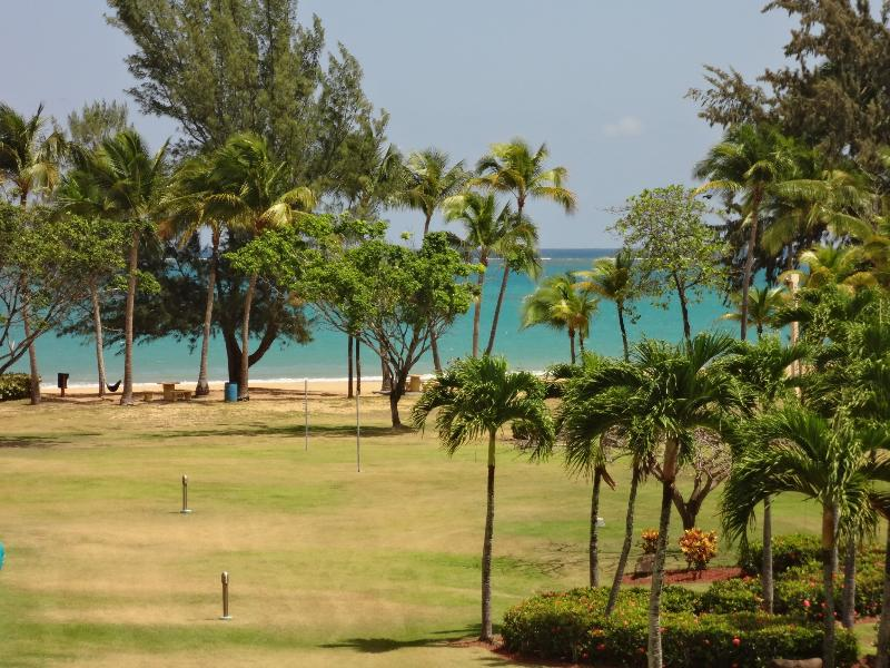 View from front balcony - Beach Front Apartment - Rio Grande - rentals