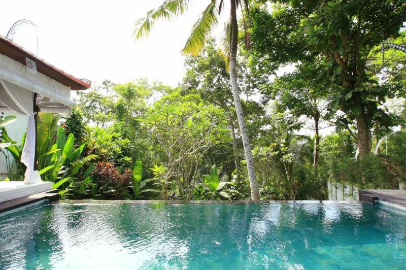 Infinity pool and poolside balé - Hidden Paradise for a Couple - Ubud - rentals