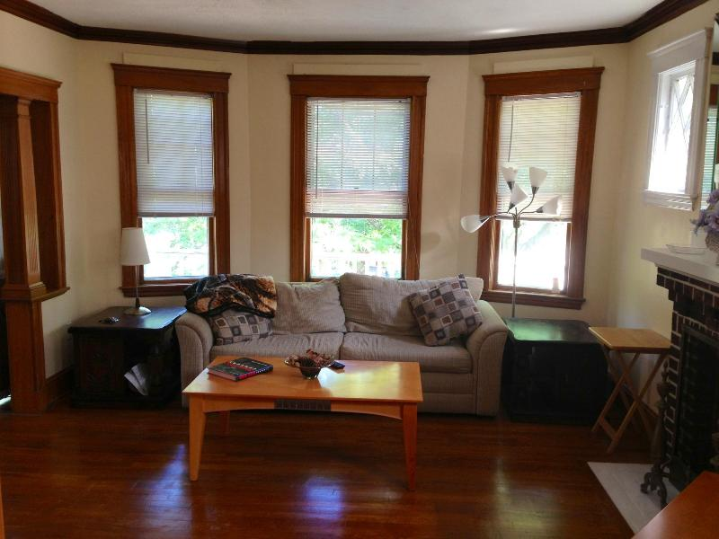 Beautiful 2 bedroom mins from Harvard, MIT, Boston - Image 1 - Cambridge - rentals