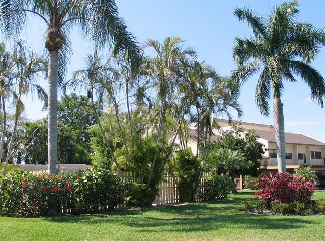 Condo The Forest - Condo at the Forest Country Club - Fort Myers - rentals