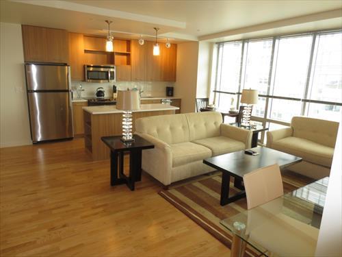 Living room - Lux Boston Theater Dist 1 BR w/WiFi - Boston - rentals