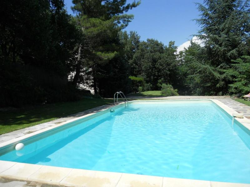 pool with diving area - Ansouis, 30 km from Aix en Provence: Villa with private pool very quiet and intimate enclosed property - Ansouis - rentals