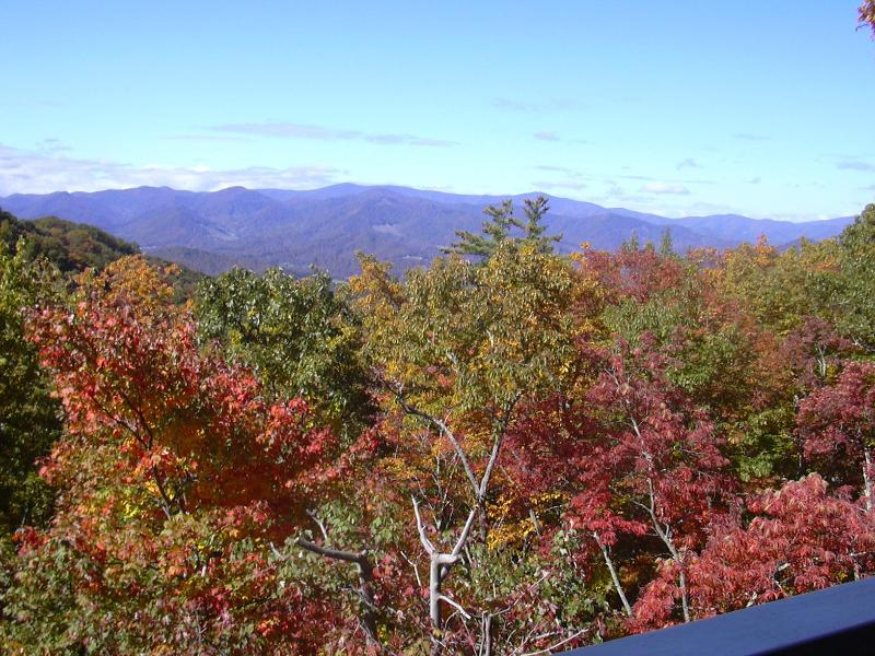 Deck view - Beautiful Burnsville Mtn condo in gated community - Mars Hill - rentals