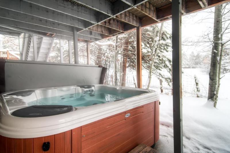 Condo w/ private hot tub & ski shuttle access - Image 1 - Salt Lake City - rentals