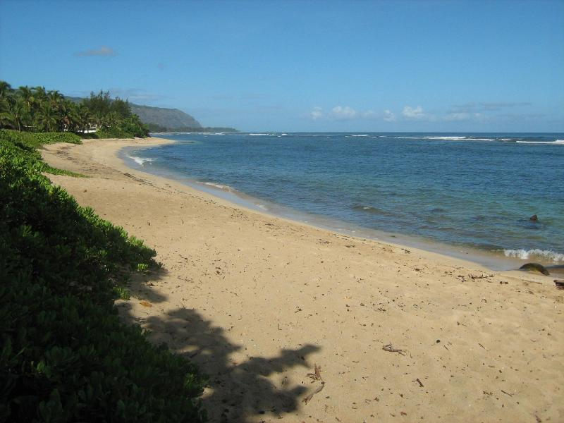 Aweoweo Beach (300 yards from the house) - Island Paradise Away from Home - Waialua - rentals