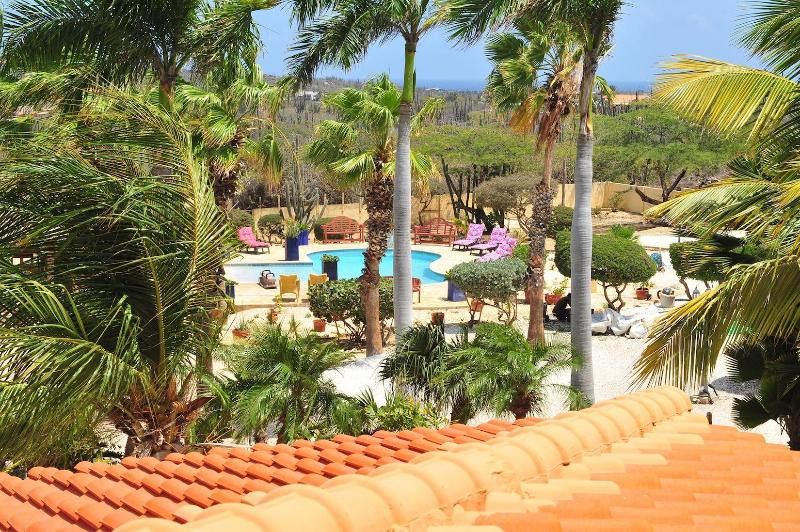 view of garden and pool - Paradise Apartment. in one of the best location in - Oranjestad - rentals