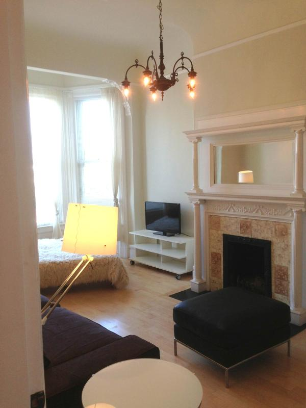 Living Room Fireplace - Historic Urbanity-Exciting Valencia St - San Francisco - rentals