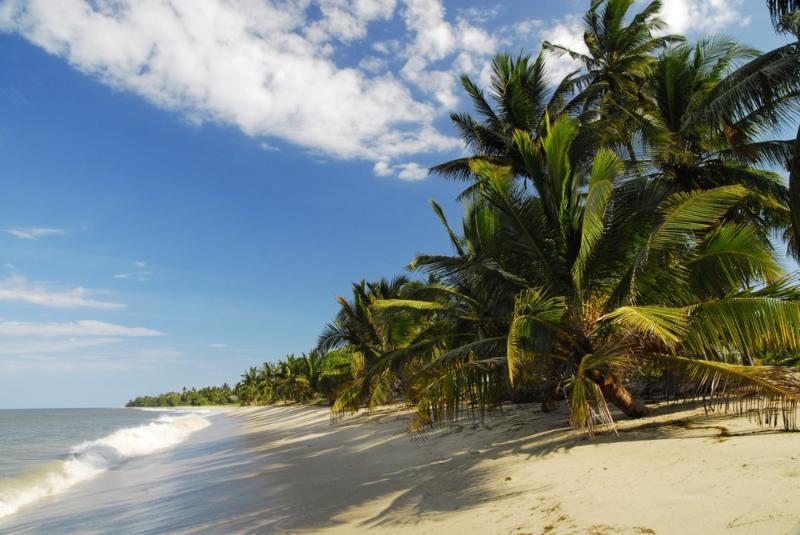 Beautiful Ushongo Beach - The Tides Lodge - Beach House - Pangani - rentals