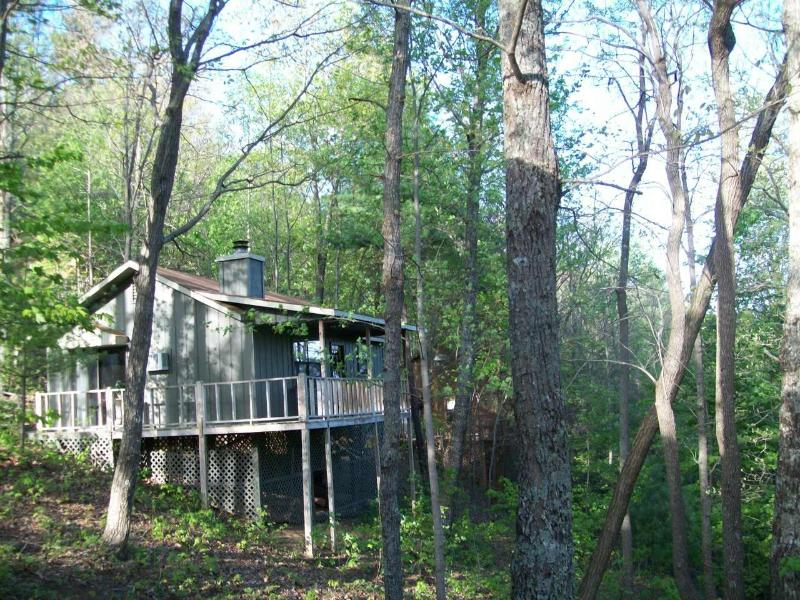 Helton Falls Lodge-Owl's Nest cabin-walk to falls! - Image 1 - Blairsville - rentals
