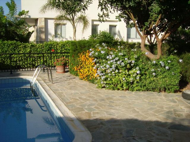 Garden and Pool area - Beautiful holiday apartment with pool in the village of Kissonerga - Paphos - rentals