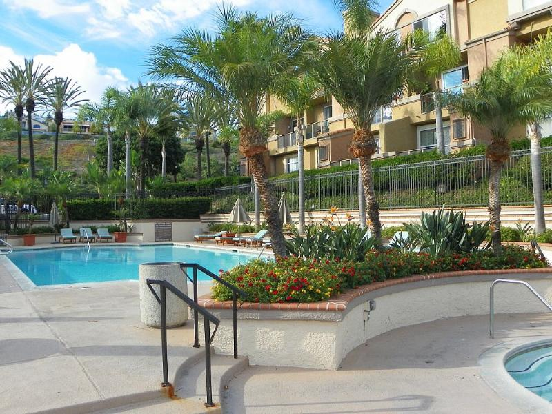 Outdoor Pool & Jacuzzi Area - Come Enjoy Your Best Vacation at Our Family Beach Home! - Laguna Niguel - rentals