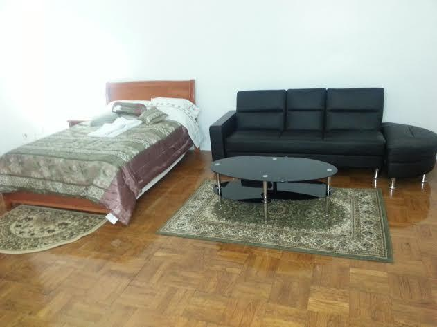 Large Bachelor Apartment With Modern Furniture - Large Deluxe Bachelor Apartment - Toronto - rentals