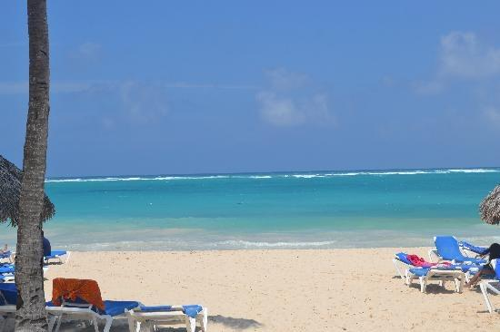 Perfect beach, white sand turquoise water - All meals & drinks included, beachside resort - Punta Cana - rentals