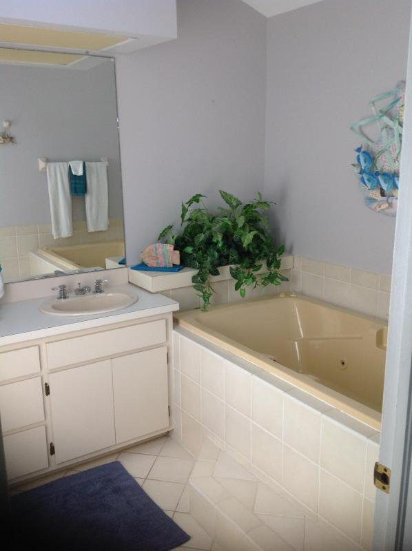 Flamingo Beach House # 2 - Image 1 - Fort Myers Beach - rentals