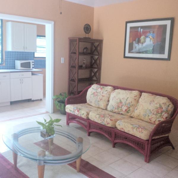 living room - Northside 1 bed 2 bath Apt. St. Thomas - Charlotte Amalie - rentals
