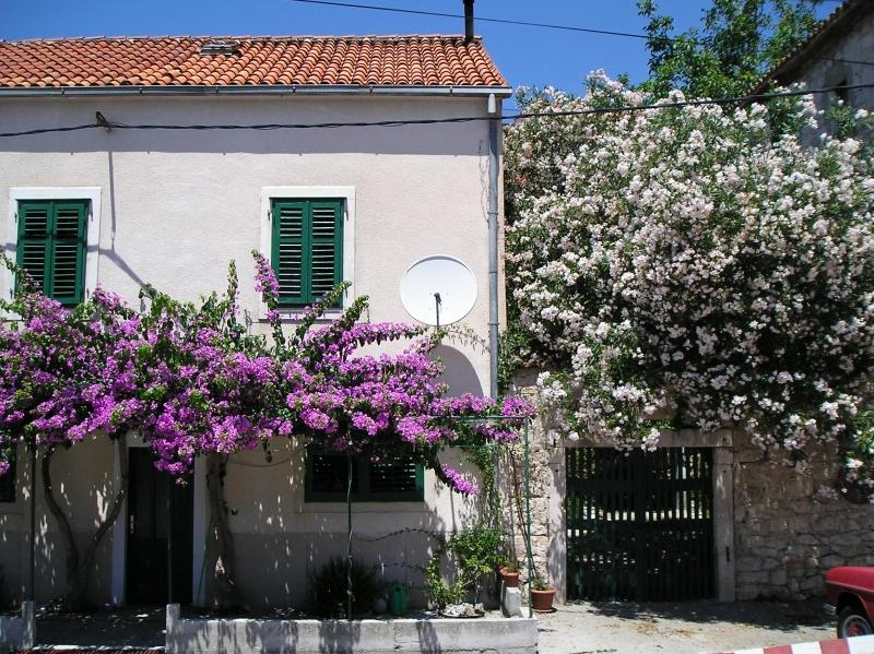 The Old House - Image 1 - Makarska - rentals