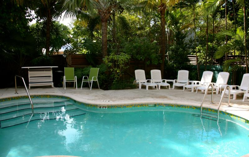 Private Pool Area - Top Of Duval- 6 Bedroom Penthouse - Key West - rentals