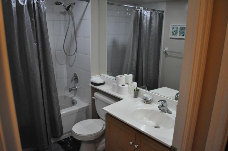 Downtown 1 Bedroom with Parking - Image 1 - Toronto - rentals