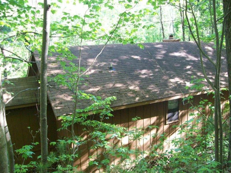 Helton Falls Lodge-American View cabin-Vogel Park - Image 1 - Blairsville - rentals