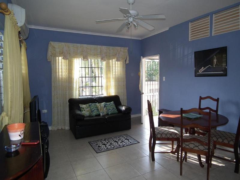Beautiful Apartment in Liguanea - Image 1 - Kingston - rentals