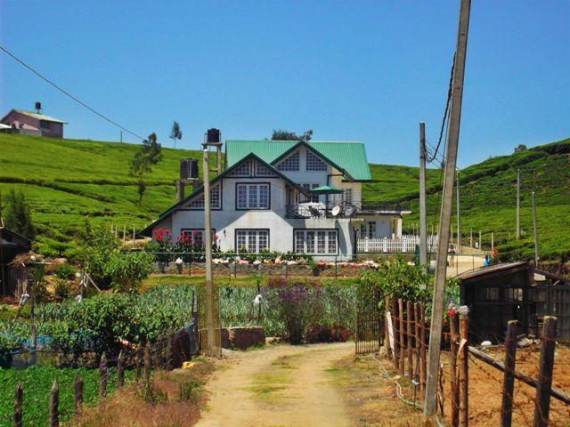 Front View - Magastota Bungalow - Dambulla - rentals