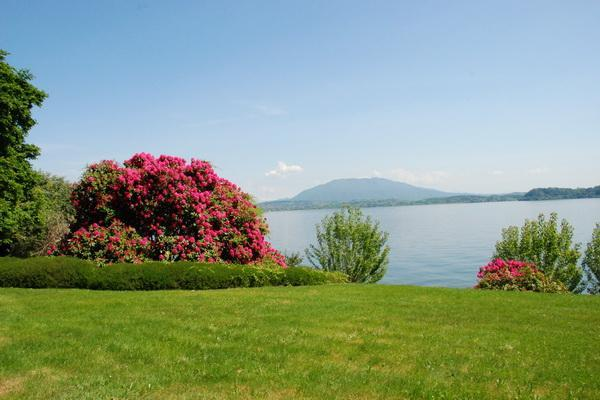 Lake Maggiore Lesa lakefront villa with pool - Image 1 - Lesa - rentals