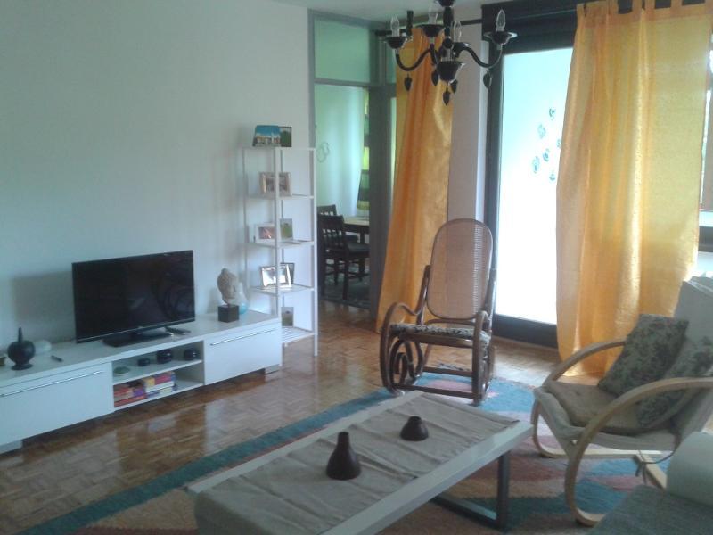 Living room - 1 Bedroom Apartment Central, Sarajevo, Ciglane - Sarajevo - rentals