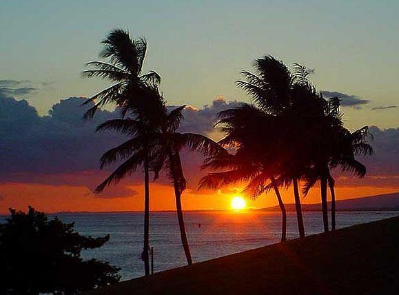 Oceanfront, 1 bedroom, great view and beach - Image 1 - Kapaa - rentals