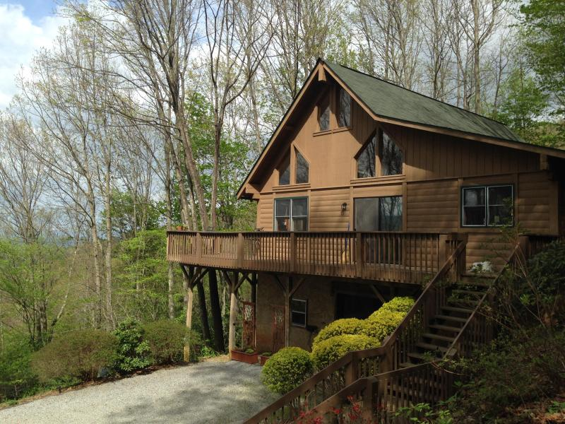 Top of the Line Asheville Mountain Cabin - Top of the Line Asheville Mountain Cabin - Leicester - rentals
