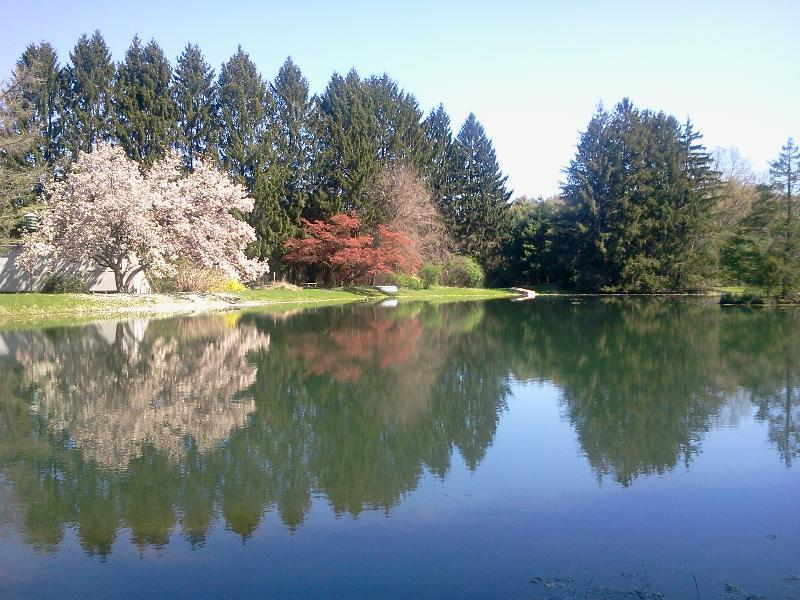 Pond Views and Spring at Le Petit Chateau - Beautifully Restored Country Estate and Farmhouse - Hyde Park - rentals