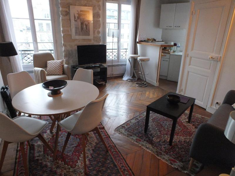 living room - Nice Marais 1 Bedroom Apartment - Paris - rentals