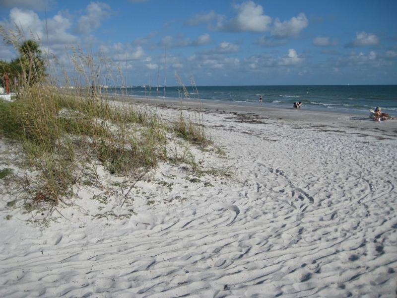 Paradise! - Lrg Studio, Walk to Beach Gulf of Mexico Sleeps 2 - Redington Beach - rentals