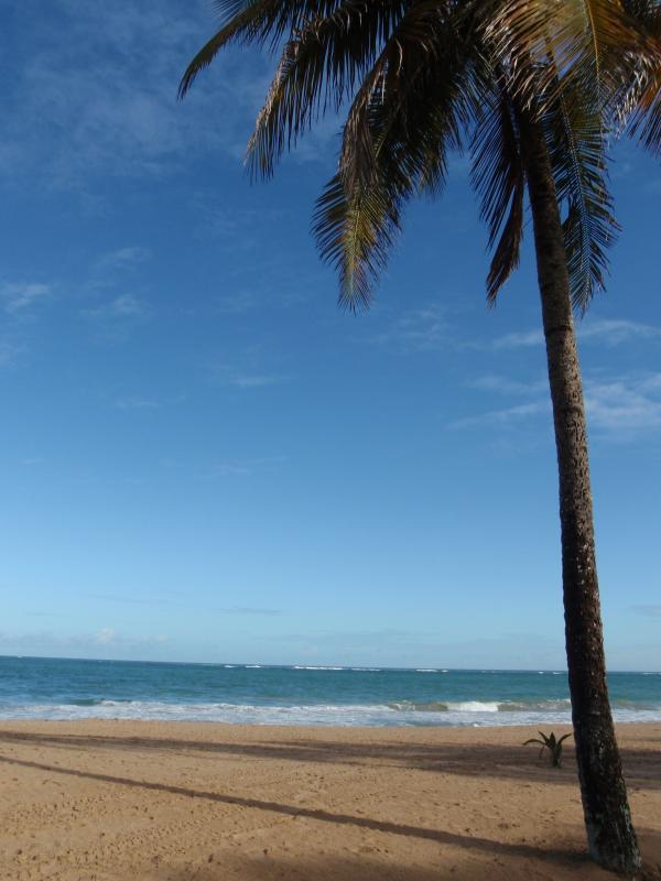 Beach - Villa Elena Townhouse Apt in Ocean Park, San Juan - San Juan - rentals