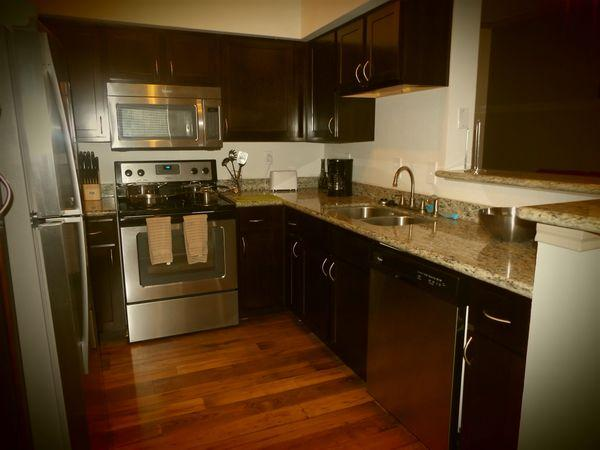 Awesome Apartment in Afton Oak2MC********* - Image 1 - Houston - rentals