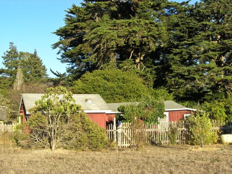 1906 Bolinas Country Cottage - Image 1 - Bolinas - rentals