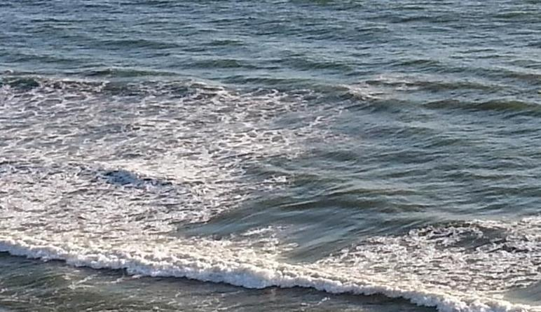 Ocean-Front Fully remodeled 2Bd Condo- Walk to Pier! - Image 1 - San Clemente - rentals