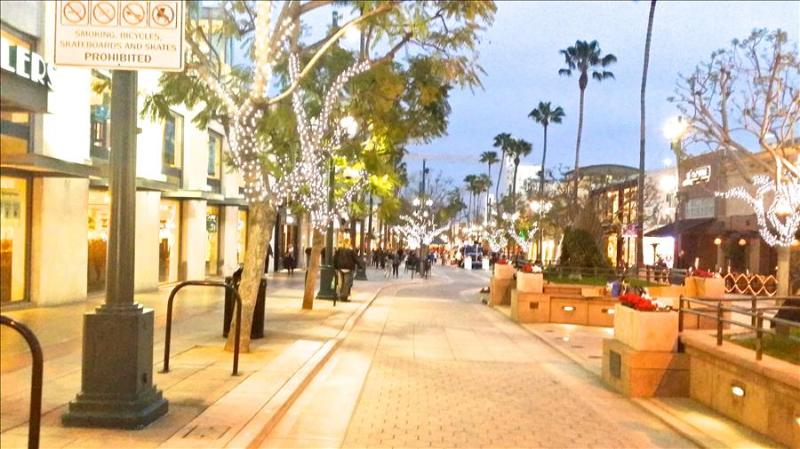 SANTA MONICA:  1 Bed Walk to the Beach, Pier and Shopping! - Image 1 - Santa Monica - rentals
