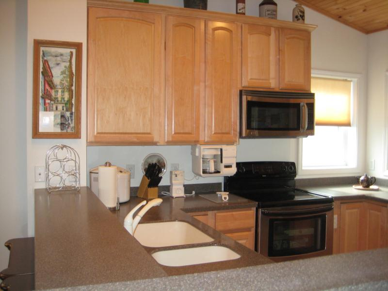 Luxurious and Spacious Condo w / Mile High  Views - Image 1 - Beech Mountain - rentals