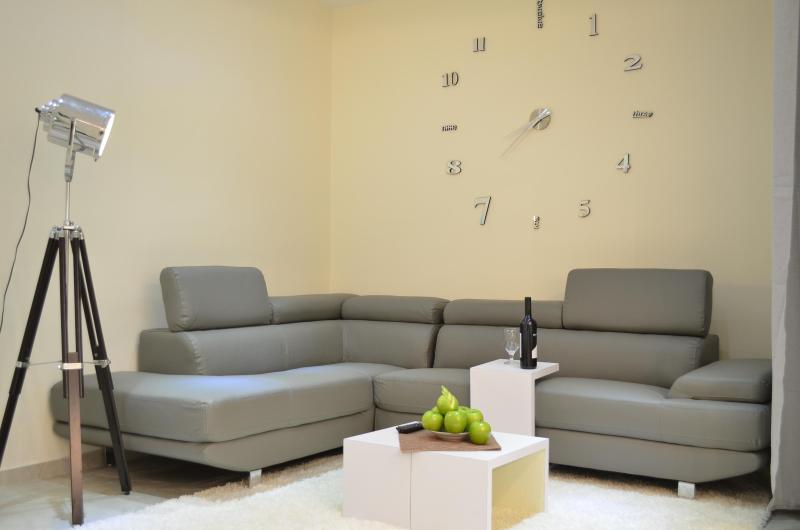 living room - 3 bdr 2.5 bath brand new-rechavia!!! - Jerusalem - rentals