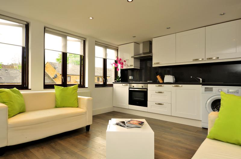 Lounge/Kitchen - Recently renovated modern three bedroom apartment. - London - rentals
