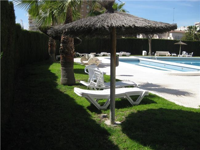 Apartment 1 bedroom with WIFI Alicante playa - Image 1 - Alicante - rentals