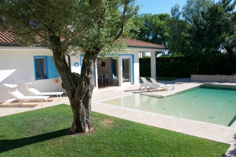 Villa with swimming pool in an exclusive private island close to Venice - Image 1 - Isola Albarella - rentals
