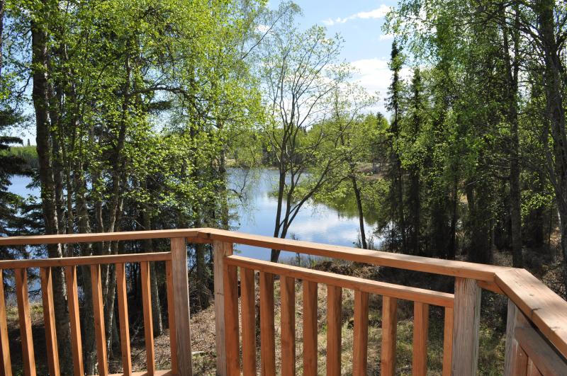 View of the lake. - Traditional Cabin with Beautiful Lake View - Kenai - rentals