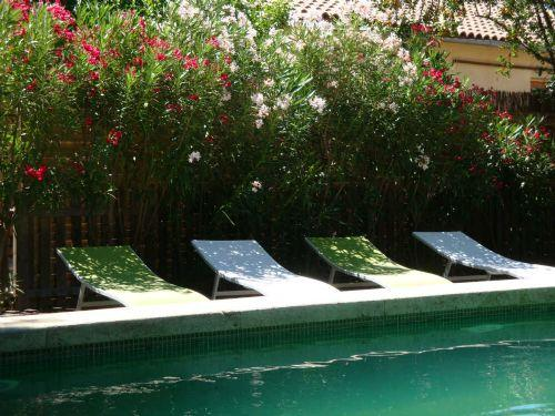 Plenty of sunloungers around the pool for the whole family - Secret Garden 3 - garden & pool - central Pezenas - Pezenas - rentals