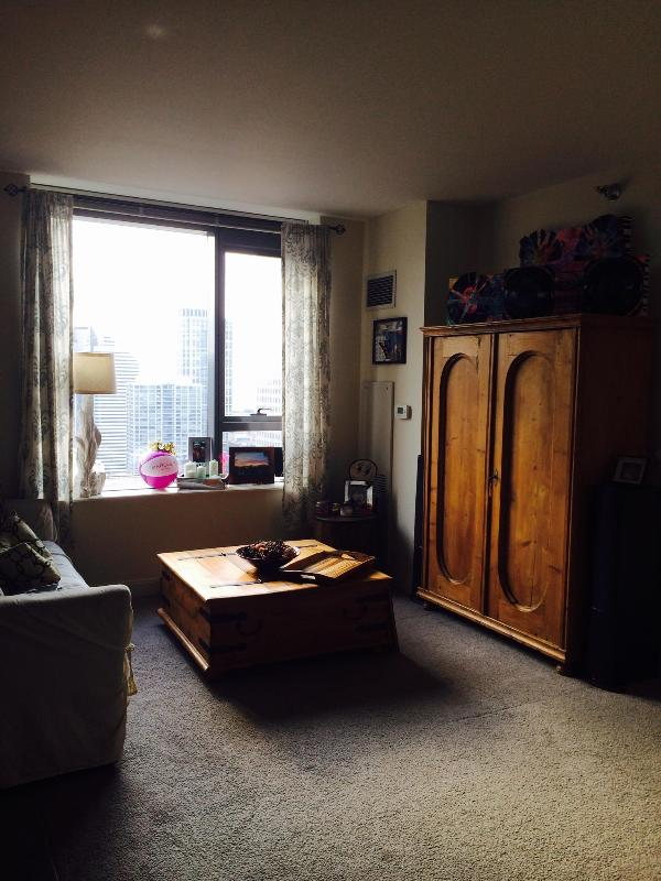Luxury 1 Bed Fully Furnished in the heart of LOOP - Image 1 - Chicago - rentals