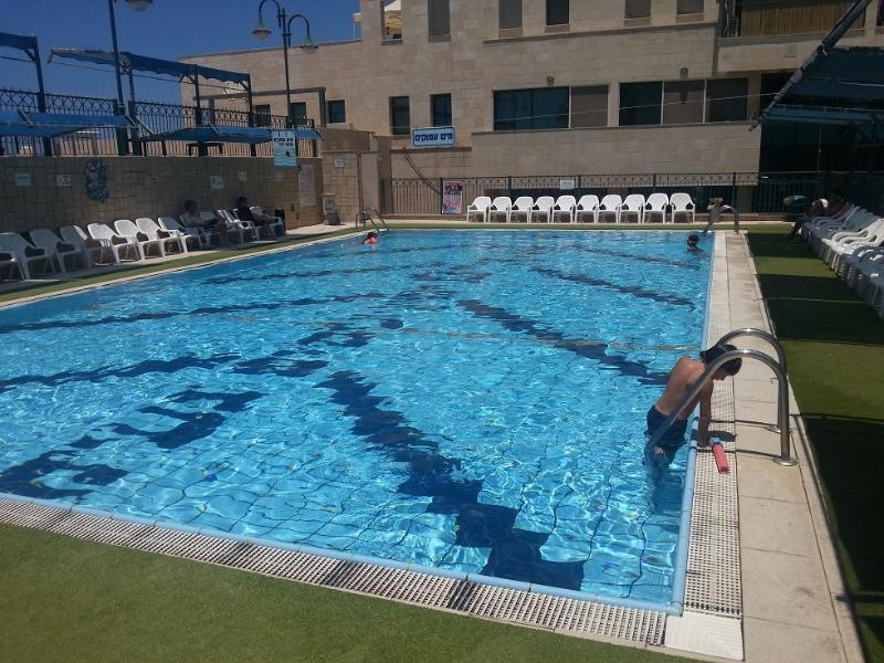 Swimming Pool - Penthouse with Beachfront View - Gedera - rentals